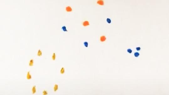 授業に生かせる線描・クレパス・絵の具の基本説明画像